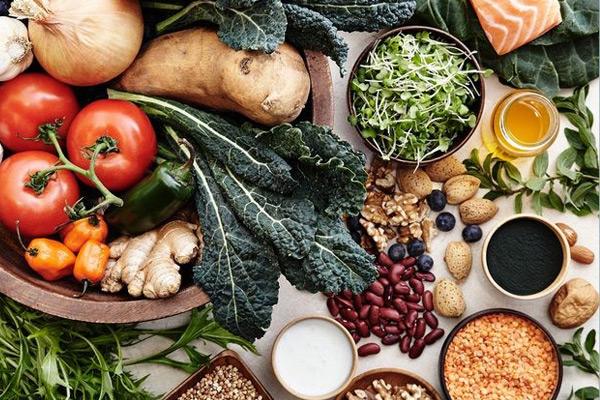 کدام برنامه غذایی کم کربوهیدرات بهتر است؟