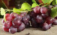 خوردن انگور می تواند به لاغر شدنم کمک کند؟