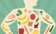 مینرال های اصلی کدامند و از چه غذاهایی دریافتشان کنیم؟