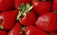 چه زمانی میوه بخوریم؟ قبل یا بعد از وعده غذایی؟