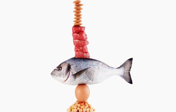 این شایعات را درباره پروتئین باور نکنید