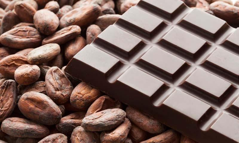 بهترین غذاهای ضد چین و چروک را بشناسید پوست و مو رژیم لاغری دکتر کرمانی کاکائو