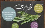 راهنمای استفاده از گیاهان در آشپزی