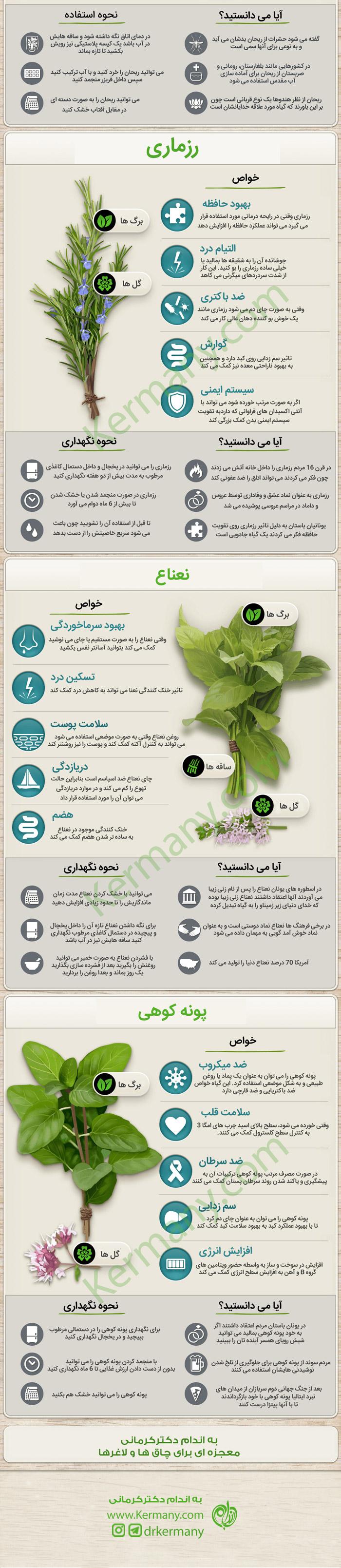 گیاهان چگونه به بهبود سلامتمان کمک می کنند خواص گیاهان دارویی رژیم لاغری