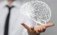 سه چیز که مغزتان را نجات خواهد داد