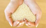 ویتامین E سرشار از مزیت مخصوصا برای آقایان رژیم غذایی سالم