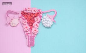 کیست تخمدان یکی از بیماری های شایع در بین زنان است که در برخی موارد نادر میتوانید به سرطان تخمدان نیز منجر شود.