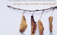 پرنده هایی که روی شاخه نشستن هرگز ترس از شکستن شاخه ندارند... زیرا اعتماد آنها به شاخه ها نیست ، بلکه به بالهایشان است... همیشه به خودت اعتماد کن،خودت را باور کن...