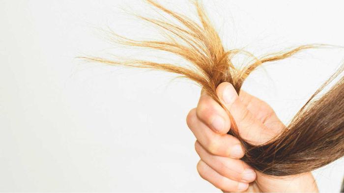 نشانه ها و علائم کمبود پروتئین را بشناسید ریزش مو رژیم لاغری