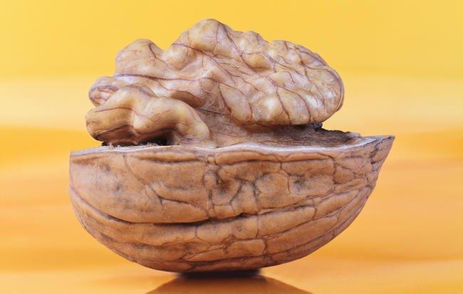 با بالا رفتن سن، این غذاها را برای سلامت مغز بخورید