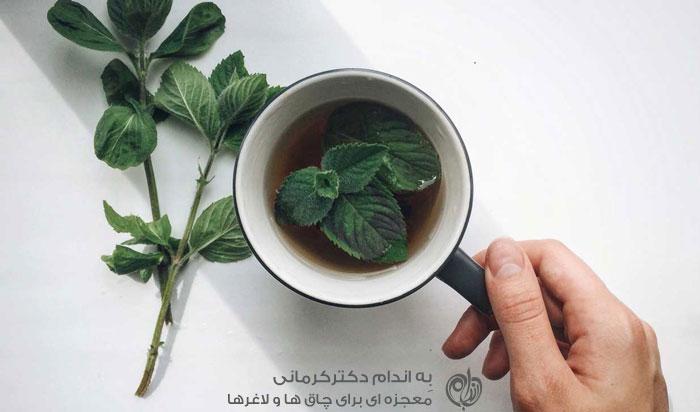 یک نعنا و این همه خاصیت رژیم دکتر کرمانی