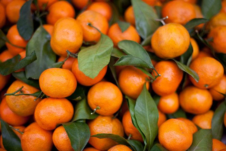 غذای کالری منفی - نارنگی