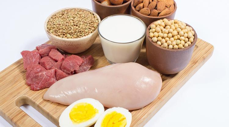 کالری و پروتئین