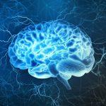 انعطاف پذیری عصبی