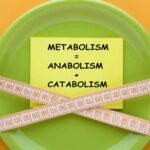 افزایش سوخت و ساز یا متابولیسم بدن موجب کاهش وزن سریعتر می شود.