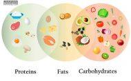ریز مغذی ها و درشت مغذی ها