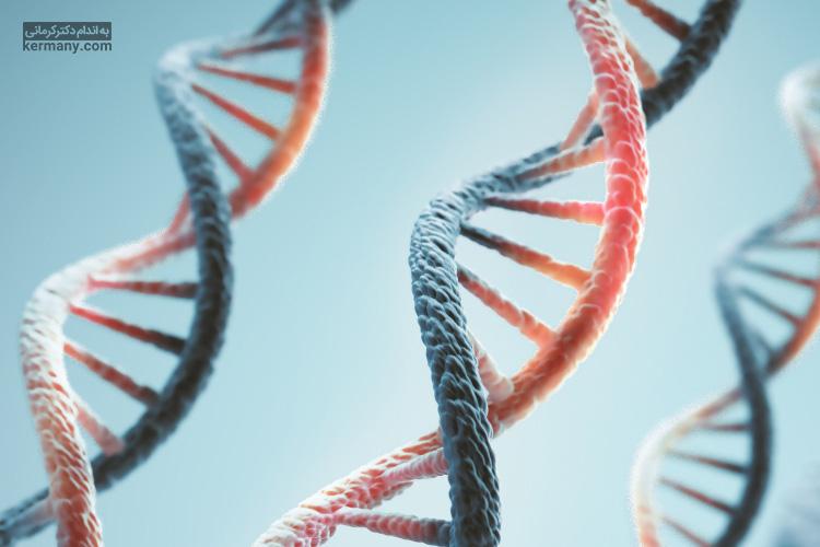 ژنتیک یکی از عوامل تاثیرگذار بر متابولیسم پایه افراد است.