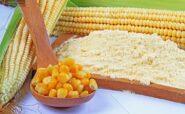 رژیم غذایی مک دوگال یک رژیم بر پایه مصرف نشاسته و عدم مصرف چربی ها است.